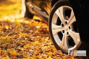 Fall Car Tips